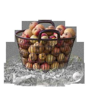 Apfelgrada